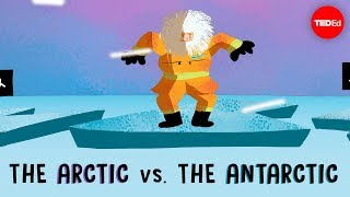 Download The Arctic vs. the Antarctic - Camille Seaman Video