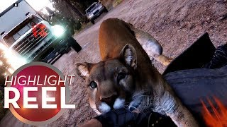 Download Highlight Reel #385 - You Just Got Far Cry'd Video