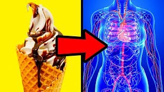 Download What If You Stopped Eating Sugar for 1 Week Video