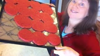 Download Dehydrating Juice Pulp to make Crackers Video