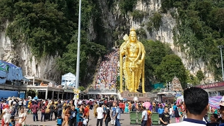 Download Thaipusam Festival 大宝森节 2017 @ Batu Caves, Malaysia 吉隆坡黑風洞 (Part 1) 4K UHD Video