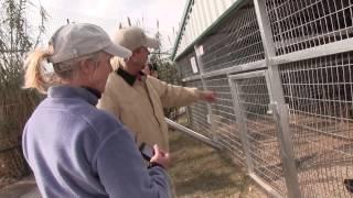 Download USDA Inspection Video