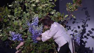Download Ikebana and music — journey through time and space | Reiko Takenaka | TEDxKyoto Video