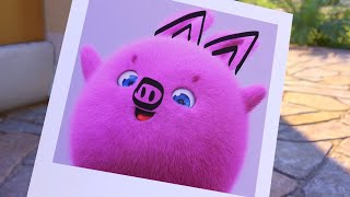 Download Sunny Bunnies | Taking The Cutest Picture 🐽 | SUNNY BUNNIES COMPILATION | Videos For Kids Video