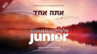 Download Shalsheles Junior - Ata Echad Acapella Single Video