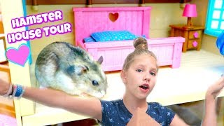 Download HAMSTER HOUSE TOUR! Hamsters Tour the Lil Woodzeez House Video
