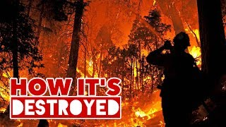 Download Wildfires - HOW IT'S DESTROYED Video