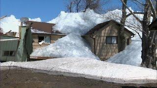 Download Le ciel nous est tombé sur la tête 2 : le Tsunami de glace. Video