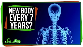 Download Do You Really Have a New Body Every 7 Years? Video