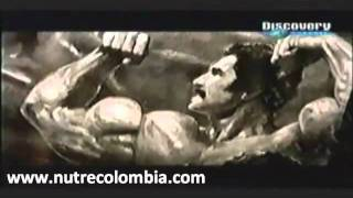 Download ″Músculos al extremo″ documental Discovery. Video