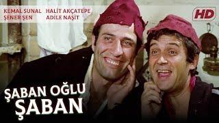 Download Şaban Oğlu Şaban | FULL HD Video