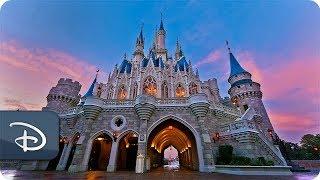 Download #DisneyParksLIVE: Sunrise at Magic Kingdom   Walt Disney World Video