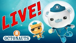 Download OCTONAUTS LIVE EXTREME ADVENTURES Video