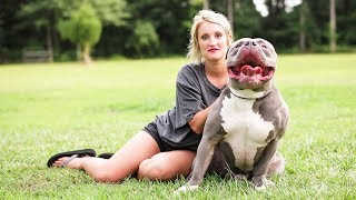 Download Mississippi Mom Is The $15,000 Pit Bull Queen Video