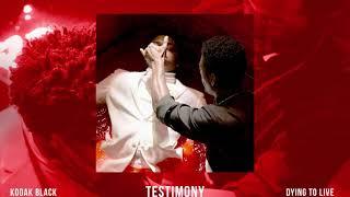 Download Kodak Black - Testimony Video