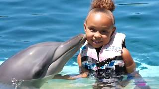 Download GIRL SWIMS WITH DOLPHIN | MARINE MAGIC | COFFS HARBOUR AUSTRALIA Video