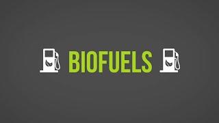 Download Biofuels 101 Video