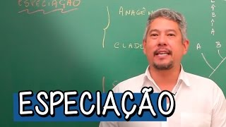 Download Tipos de Especiação - Extensivo Biologia | Descomplica Video