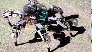Download Hexapod spider robot six 3DOF legs with 18 servos based on arduino board Video
