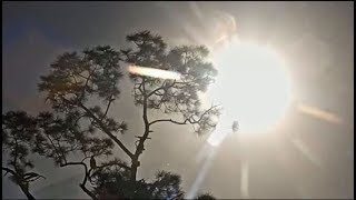 Download SWFL Eagles ~ 1/15/20 ~ CROW Removes E14 & Egg 2 - Afternoon Revelations Video