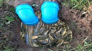 Download Awesome!! Smart Man Catch A Lot Of Fish By Creative Deep Hole Fish Trap With Plastic Pipes Video