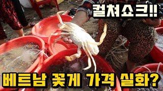Download 베트남 어촌마을에서 5만원으로 먹을 수 있는 꽃게의 양!! 배터지게 먹음... 컬쳐쇼크!! Video