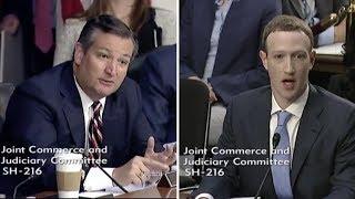 Download Ted Cruz makes Mark Zuckerberg Sweat During Congressional Testimony Video
