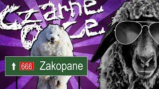 Download Hejt na Zakopane, higiena młodych Polaków, guma Turbo i chu*owa pogoda [CZARNE OWCE] [#14] Video