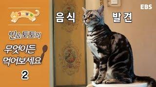 Download 고양이를 부탁해 - 빈&토토의 무엇이든 먹어보세요 #002 Video