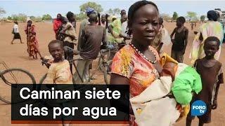 Download Caminan siete días por agua - Foro Global Video