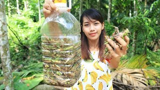 Download Yummy cooking grasshopper recipe - Cooking skill Video