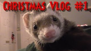 Download PRO Decorating w/ Michelle Creber - Christmas Vlog #1 Video
