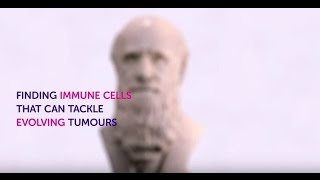 Download Finding immune cells that can tackle evolving cancers Video