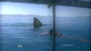 Download Dateline Survivor: Jaws! | Dateline NBC Video