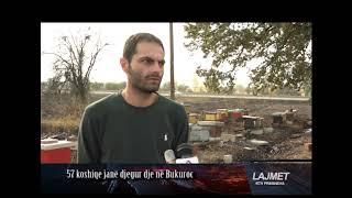 Download Nga zjarri digjen 57 koshere me bletë Video