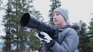 Download He's an Award-Winning Wildlife Photographer and He's Only 13 Video