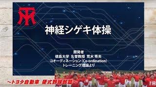 Download 神経シゲキ体操 硬式野球部篇 Video
