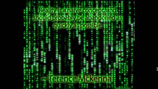 Download Hacking Reality (Terence Mckenna) Video