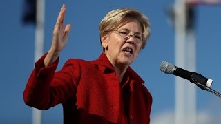 Download Sen. Elizabeth Warren slams Trump cabinet pick Video