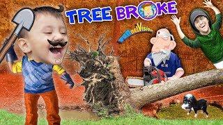 Download HELLO NEIGHBOR BROKE OUR TREE!! Oreo's Pavilion vs Fallen Tree (FUNnel Fam Hurricane Vlog) Video