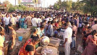Download Early Morning Fish Market - Matlapalem near Kakinada Andhra Pradesh INDIA Video