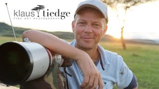 Download Pride of Africa - Fine Art Wildlife Photography - Klaus Tiedge Video