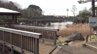 Download 44 Florian auf Tour - Tokio 3.2 - Hotelumgebung & Shinagawa Ward Resident's Park Video