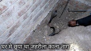 Download घर मे छुपा था एक जहरीला सांप, फिर क्या हुआ आप ही देखिये   A Venomous snake was hidden in the house Video