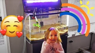 Download Set up her first Aquarium. Kids and Family Aquarium Project. Video