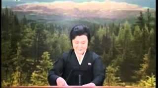Download Rücktritt von Bundespräsident Christian Wulff im nordkoreanischen Fernsehen Video