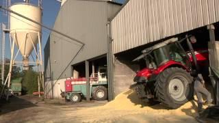 Download Réussir le stockage du maïs grain humide - ARVALIS-infos.fr Video