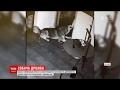 Download У Китаї пес, втікаючи із клітки у ветеринарній клініці, звільнив ще 2 собак Video