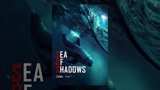 Download Sea of Shadows Video
