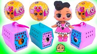 Download LOL Surprise Pets Adoption - Mystery Blind Bag Toys Video Video